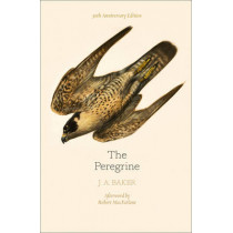 The Peregrine: 50th Anniversary Edition: Afterword by Robert Macfarlane by J. A. Baker, 9780008216214