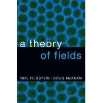 A Theory of Fields by Neil Fligstein, 9780190241452
