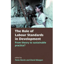 The Role of Labour Standards in Development: From theory to sustainable practice by Tonia Novitz, 9780197264911