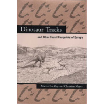 Dinosaur Tracks and Other Fossil Footprints of Europe by Martin G. Lockley, 9780231107105