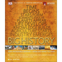 Big History: Our Incredible Journey, from Big Bang to Now by DK, 9780241225905