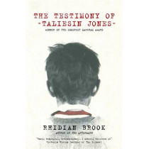The Testimony of Taliesin Jones by Rhidian Brook, 9780241972144