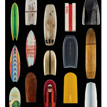 Surf Craft: Design and the Culture of Board Riding by Richard Kenvin, 9780262027601