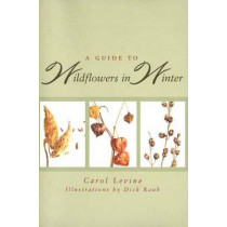 A Guide to Wildflowers in Winter: Herbaceous Plants of Northeastern North America by Carol Levine, 9780300065602