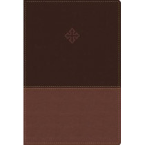 The Amplified Study Bible, Leathersoft, Brown by Zondervan, 9780310440802