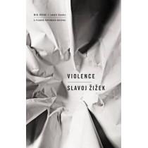 Violence: Six Sideways Reflections by Slavoj Zizek, 9780312427184
