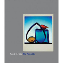 Andre Kertesz: The Polaroids by Andre Kertesz, 9780393065640