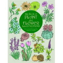 Big Book of Plant and Flower Illustrations by Maggie Kate, 9780486409467