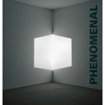 Phenomenal: California Light, Space, Surface by Robin Clark, 9780520270602