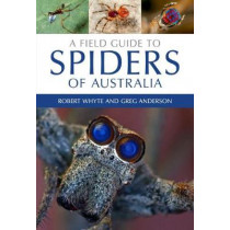 A Field Guide to Spiders of Australia by Robert Whyte, 9780643107076