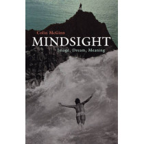 Mindsight: Image, Dream, Meaning by Colin McGinn, 9780674022478