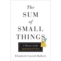 The Sum of Small Things: A Theory of the Aspirational Class by Elizabeth Currid-Halkett, 9780691162737
