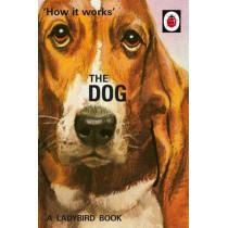 How it Works: The Dog by Jason Hazeley, 9780718184353