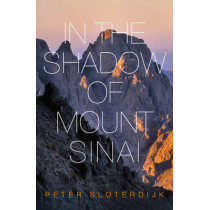 In The Shadow of Mount Sinai by Peter Sloterdijk, 9780745699240
