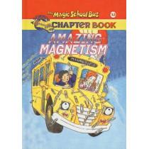 Amazing Magnetism by Rebecca Carmi, 9780756915766