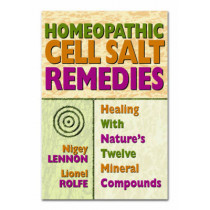 Homeopathic Cell Salt Remedies: Healing with Natures Twelve Mineral Compounds by Nigel Lennon, 9780757002502