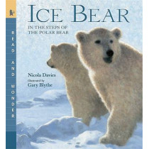 Ice Bear: In the Steps of the Polar Bear by Nicola Davies, 9780763641498