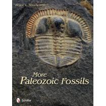 More Paleozoic Fsils by Bruce L. Stinchcomb, 9780764340307