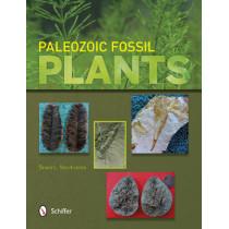 Paleozoic Fsil Plants by Bruce L. Stinchcomb, 9780764343278