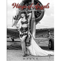 Wings of Angels: A Tribute to the Art of World War II Pinup and Aviation Vol 1 by Michael Malak, 9780764346408