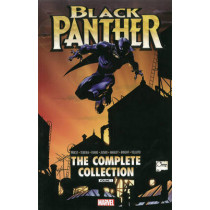 Black Panther By Christopher Priest: The Complete Collection Volume 1 by Mark Texeira, 9780785192671