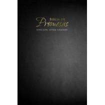 Biblia de Promesas Letra Grande-Rvr 1960 by Unilit, 9780789920928