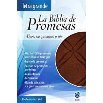 Biblia de Promesas Letra Grande-Rvr 1960 by Unilit, 9780789920935