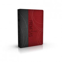 Biblia de Promesas: Edicio?n Para Jo?venes = Promise Bible: Youth Edition by RV-60, 9780789922236