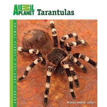 Tarantulas by Michael Andreas Jacobi, 9780793837106