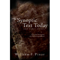 The Synoptic Text Today and Other Essays: Curriculum Development After the Reconceptualization by William F. Pinar, 9780820481272