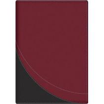 La Biblia en Orden Cronologico-Rvr 1960 by Editorial Portavoz, 9780825419997