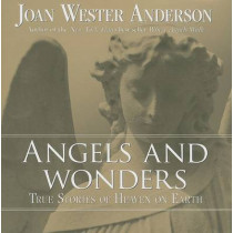 Angels and Wonders: True Stories of Heaven on Earth by Joan Wester Anderson, 9780829427332
