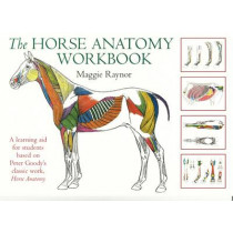 Horse Anatomy Workbook by Maggie Raynor, 9780851319056