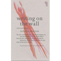 Writing on the Wall: Selected Essays by Patricia Duncker, 9780863584329