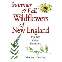 Summer & Fall Wildflowers of New England by Marilyn Dwelley, 9780892725595