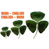 Irish-English, English-Irish Dictionary by Niklas Miller, 9780902920477