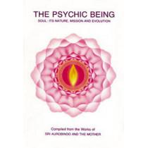 The Rainbow Serpent: Bridge to Consciousness by Robert L. Gardner, 9780941524568