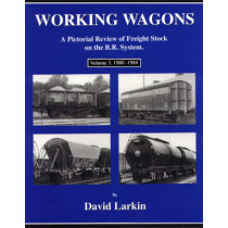 Working Wagons: A Pictorial Review of Freight Stock on the B.R.System: v. 3: 1980-1984 by David Larkin, 9780953844821