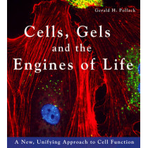 Cells, Gels & the Engines of Life: A New Unifying Approach to Cell Function by Gerald H. Pollack, 9780962689529