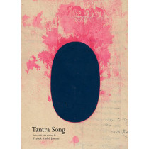 Tantra Song - Tantric Painting from Rajasthan by Franck Andre Jamme, 9780979956270