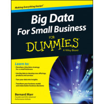 Big Data For Small Business For Dummies by Bernard Marr, 9781119027034