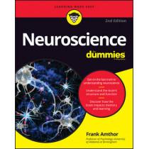 Neuroscience For Dummies by Frank Amthor, 9781119224891