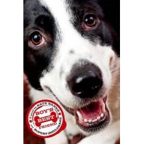 Boy'S Best Friend by Kate Banks, 9781250079725