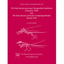 Early Jurassic pterosaur Dorygnathus banthensis (Theodori, 1830) and The Early Jurassic pterosaur Campylognathoides Strand, 1928 by Kevin Padian, 9781405192248