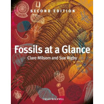 Fossils at a Glance by Clare Milsom, 9781405193368