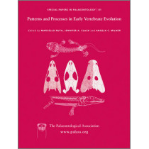 Special Papers in Palaeontology: Patterns and Processes in Early Vertebrate Evolution by Ruta Marcello, 9781405199209