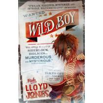 Wild Boy by Rob Lloyd Jones, 9781406354096