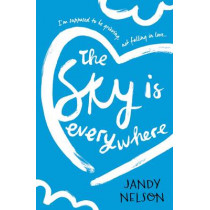 The Sky Is Everywhere by Jandy Nelson, 9781406354386