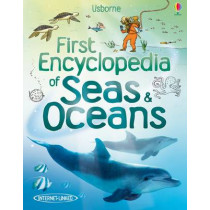First Encyclopedia of Seas and Oceans by Ben Denne, 9781409525073
