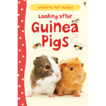 Looking After Guinea Pigs by Laura Howell, 9781409561880